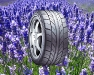 64-lavender_tire